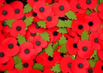 Remembrance at Marri...
